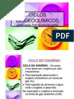 ciclos_biogeoquimicosII