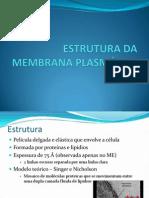 02 ESTRUTURA DA MEMBRANA PLASMÁTICA