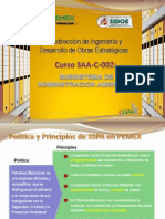 1. Saa. Introduccion
