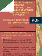 BIOG-H01_Anatomia Del Sistema Nervioso 1a. Parte
