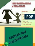Asuhan Ibu Postpartum (Askeb v)