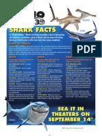 Finding Nemo Shark Facts