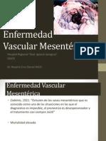 Enf Vasc Mesenteric