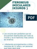 339260-ENTEROBIUS-VERMICULARIS-OXIUROS-