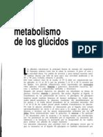 Metabolismo de Los Glucidos