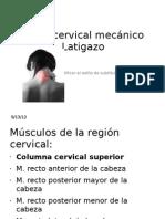 Fisiopatologia Del Dolor Cervical