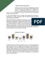PENETRACION DEL INTERNET AÑO 2010