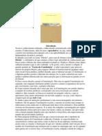 Teoria-da-Constituicao-Carlos-Ayres-Brito.pdf
