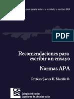 Normas APA Web