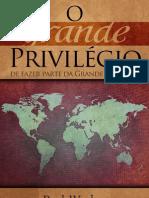O Grande Privilegio - Paul Washer