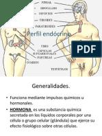 Perfil endocrino