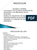 REPLICACI+ôN DEL ADN 2012 TOMAS