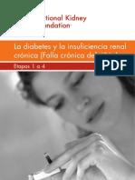 Diabetes e Insuficiencia Renal_sp