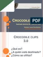 Crocodile Clips