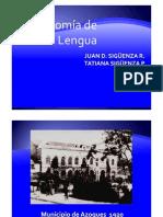Anatomia Lengua