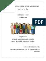 ANTOLOGÍA_ANÁLISIS_DE_LA_ESTRUCTURA_FAMILIAR_ok-2