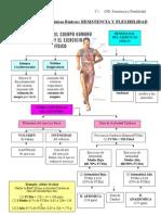 3 e Tema 1 Cfb Resist y Flexib