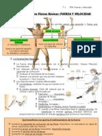 4 e Tema 1 Cfb Fuerza Velocidad