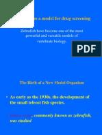 Zebrafish as a Model for Drug Screening