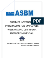 SUMMER INTERNSHIP                        PROGRAMME  ON EMPLOYEES WELFARE AND CSR IN GUA IRON ORE MINES SAIL.docx