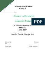 Employees Training Programs and Management Development