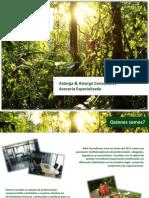 2012 Brochure A&A Consultores