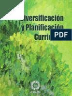 Diversificación y Planificación Curricular