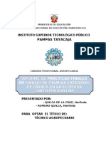 Informe de Practicas Finales Pazos 2008-Version Final
