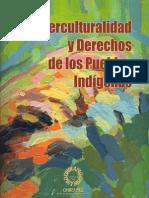 Interculturalidad y Derechos de los Pueblos Indígenas