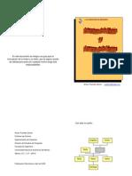 Estructura de la misión y formas de la visión