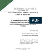 DETERMINAÇÃO DO PERÍODO RESIDUAL DE FUNGICIDAS PROTETOR E SISTÊMICO PARA O CONTROLE DE Guignardia citricarpa EM FRUTOS CÍTRICOS