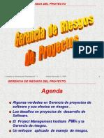 Gerencia de Riesgos V1.2PDF