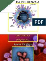 Influenza1 A