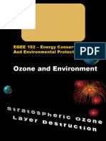 8. Ozone and Environment