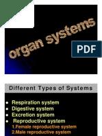 Body Organ System-1