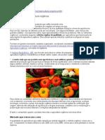Como funciona a agricultura orgânica