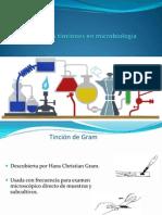 Tinciones en Microbiologia