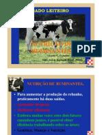 Industria de Nutricoes Do Brasil-purina-nutricao de Ruminantes