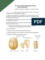 Descripción De Las Principales Patologías Del Sistema Musculoesquelético