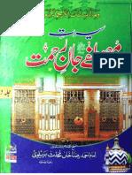 Seerat e Rasool e Arabi Vol 2