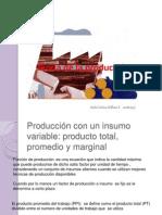 Economía Teoría de la Producción