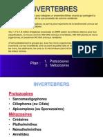 Protozoaires (2)
