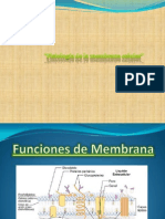 Expo 1. Histofisiologia de La Membrana Trabajo Final