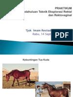 PRAKTIKUM Multimedia Ekspl.rektal