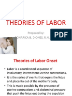 Theories of Labor