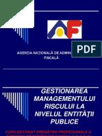 Managementul Risculuui Final