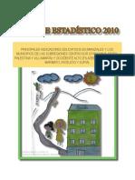 Informe Estadístico 2010