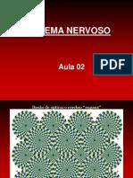 Aula 02 Neurofisiologia