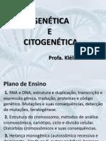 Estrutura DNA eRNA