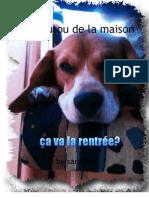 le-toutou-de-la-50567ce3376c47_44398225
